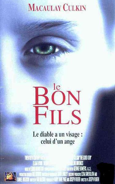 Le Bon fils [TRUEFRENCH DVDRiP]