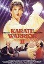 Karate Warrior 2