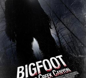 Bigfoot at Holler Creek Canyon