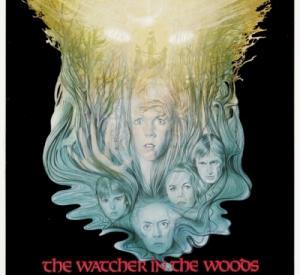 Les Yeux de la Forêt