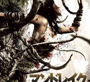 DVD Japonais