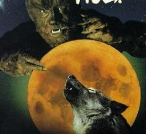 Le  Loup de la Nuit