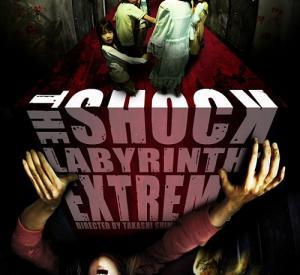 The Shock Labyrinth 3D