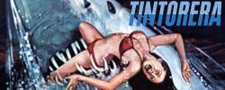 Tintorera : Du sang dans la mer