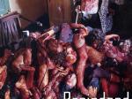 Grausam Rouge 3 :  Braindead