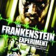 The Frankenstein Experiment