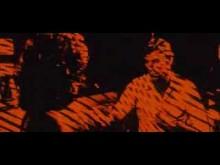 Il Gatto A Nove Code (Trailer Italiano)