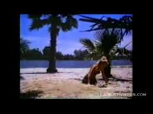 MTV Freddy Krueger Video Hour TV Spot- Summer 1988