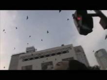 予告編 :『オカルト』/ Trailer :『occult』