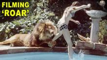 """The Insane Story Behind the Movie """"Roar"""""""