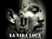 La Vida Loca (2008) - Sous-titres français optionnels