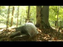 Deep Into the Rabbit Hole Trailer