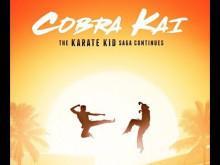 Cobra Kai (Leo Birenberg & Zach Robinson - 2018)