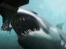 2 Headed Shark Attack (2012) - Official Trailer