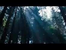 Wilderness trailer