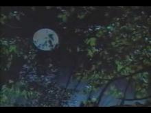 Bloodmoon Trailer 1990