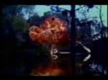 Gator Bait trailer