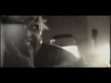 Trailer Park of Terror Trailer (TADFF 2008)