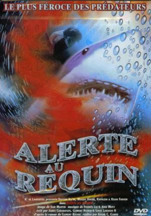 Alerte au requin