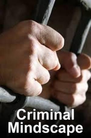 Criminal Mindscape