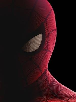 Spider-Man Homecoming 3