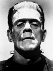 Portrait de Rom.Dahmer