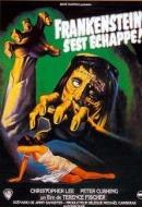 Frankenstein s'est echappé