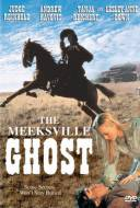 The Meeksville Ghost