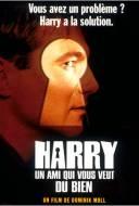 Harry: Un Ami Qui Vous Veut du Bien