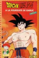Dragon ball Z : A la poursuite de Garlic