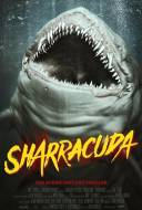 Sharracuda